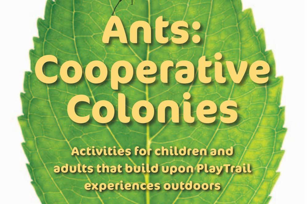 Ants-Cooperative-Colonies