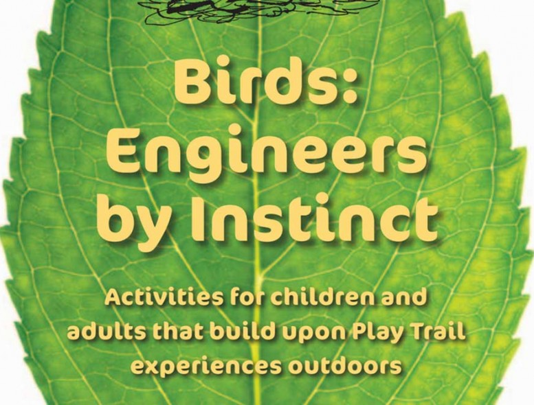 Birds-Engineers-by-Instinct