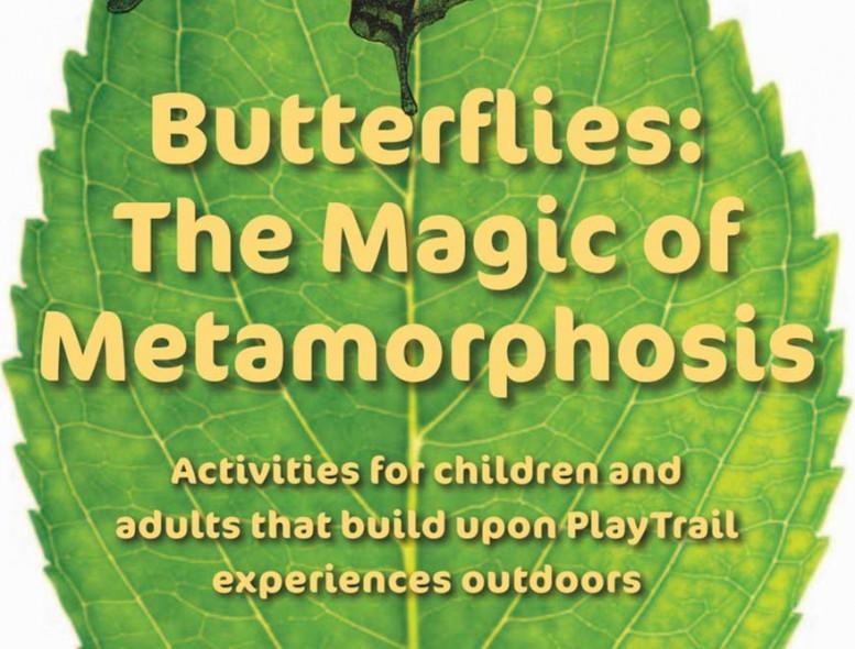 Butterflies-Magic