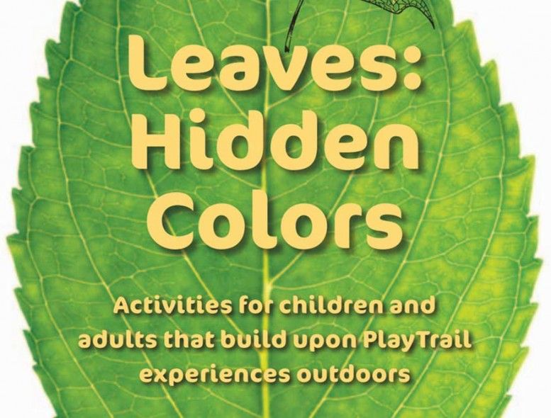 Leaves-Hidden-Colors