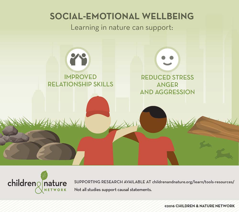 Social-Emotional Wellbeing